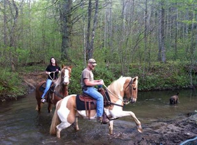 Blue Ridge Mountain Trail Rides at Hell's Hollow Adventure Outpost